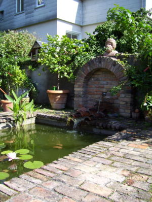 Fountain-and-pond